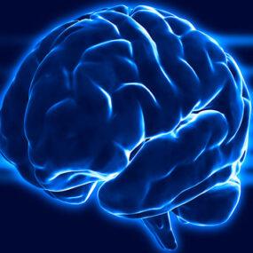 Descubre la Programación Neurolingüística o PNL