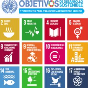 La inserción laboral de las personas con discapacidad para cumplir los ODS