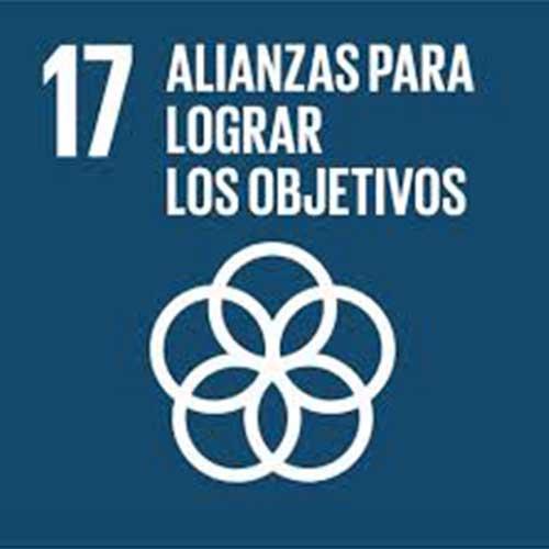 Objetivo de Desarrollo Sostenible Alianzas para lograr los objetivos